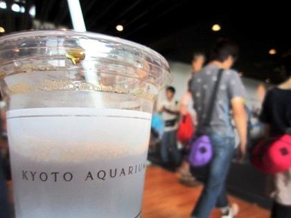 アイスコーヒー 京都水族館