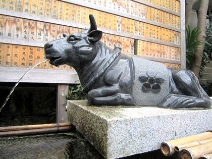 菅原院天満宮神社の牛