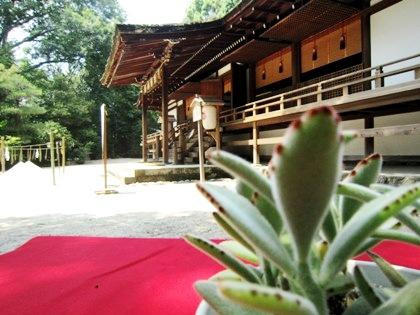 宇治上神社拝殿 盛砂 月兎耳