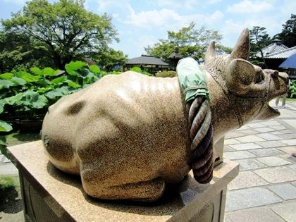 三室戸寺の牛