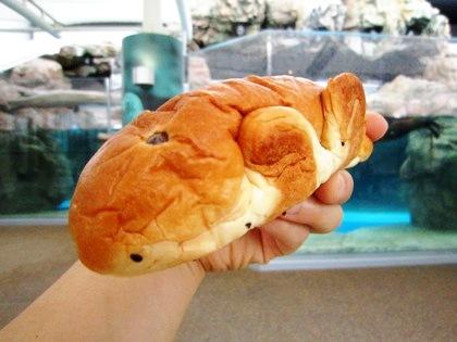 アイすいぞくパン 京都水族館