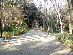 参道 下鴨神社の風景