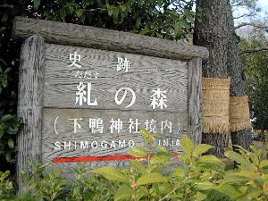 糺の森 下鴨神社の風景