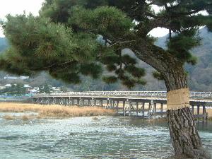 togetsu-bridge.JPG