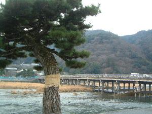 渡月橋 嵐山温泉 花筏 宿泊予約