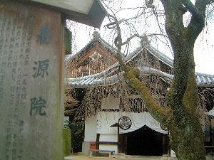 養源院本堂 京都観光